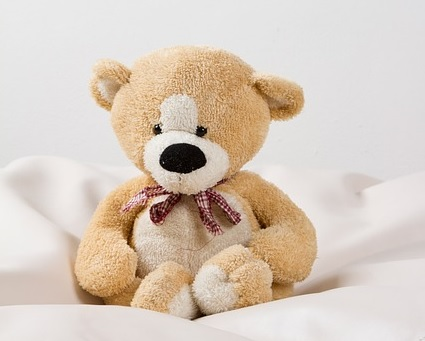 teddy picture