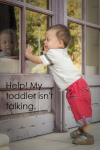 Help!  My toddler isn't talking.
