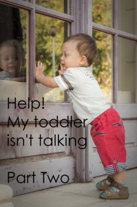Help!  My toddler isn't talking – Part 2