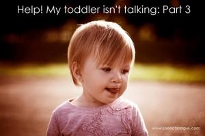 Help! My toddler isn't talking – Part 3