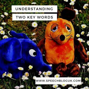 Understanding two key words