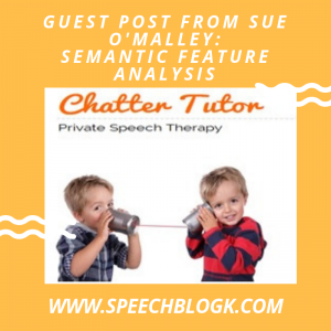 Guest post: Semantic feature analysis